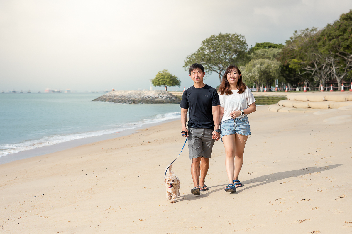 Pet Photography singapore lifestyle